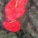 身近な花 アンスリウム
