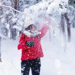 雪の日に剪定するメリット?