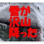 突然の大雪で朝5時過ぎから除雪してました!